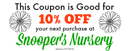 snooper-coupon